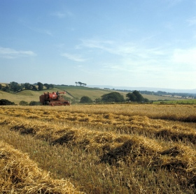 Harvesting Bedfordshire, Credit Britainonview